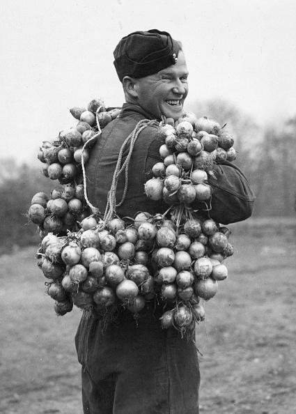 Onion「Army Onions」:写真・画像(17)[壁紙.com]