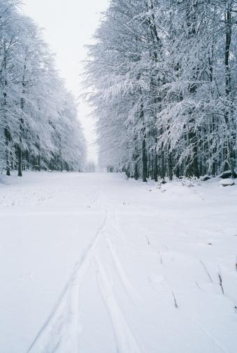 Monte Amiata「Italy, Tuscany, Amiata Mount, Winter landscape」:スマホ壁紙(8)
