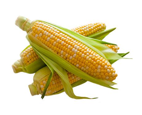 Corn「Corn」:スマホ壁紙(6)