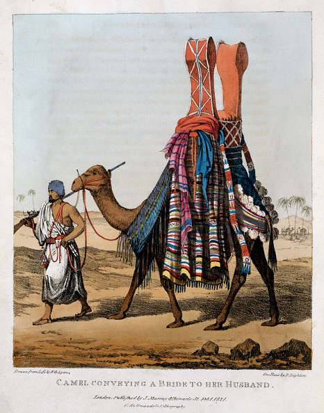 Bride「Camel Conveying A Bride To Her Husband' 1821」:写真・画像(3)[壁紙.com]