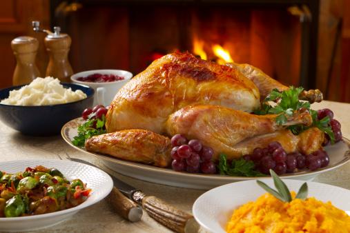 Cranberry Sauce「Freshly roasted turkey dinner with vegetables in bowls」:スマホ壁紙(14)