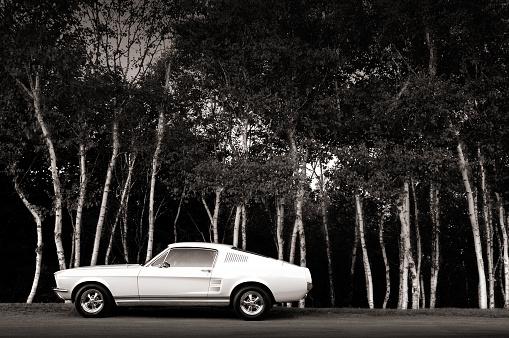 Hot Rod Car「Vintage Muscle Car」:スマホ壁紙(11)