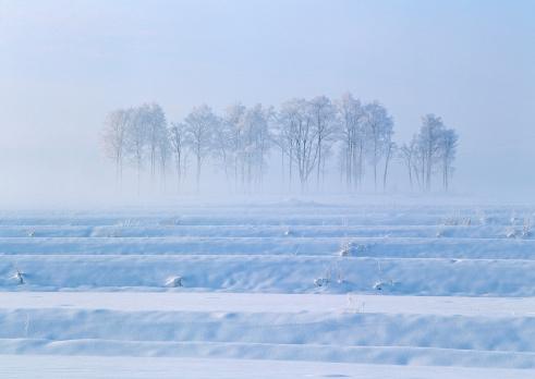 Hokkaido「Snowstorm」:スマホ壁紙(15)