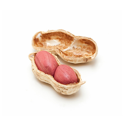 Nut - Food「Peanut isolated on a white background」:スマホ壁紙(4)