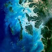 Auckland Islands壁紙の画像(壁紙.com)