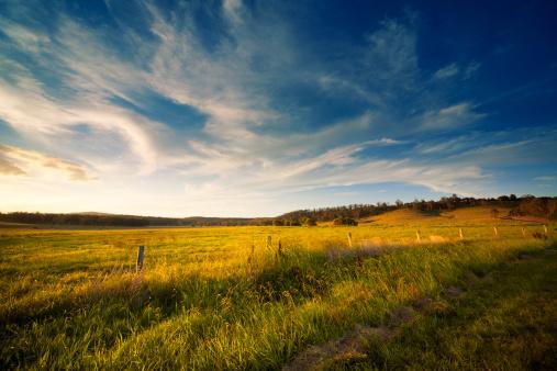 Queensland「Wide Open Field」:スマホ壁紙(9)