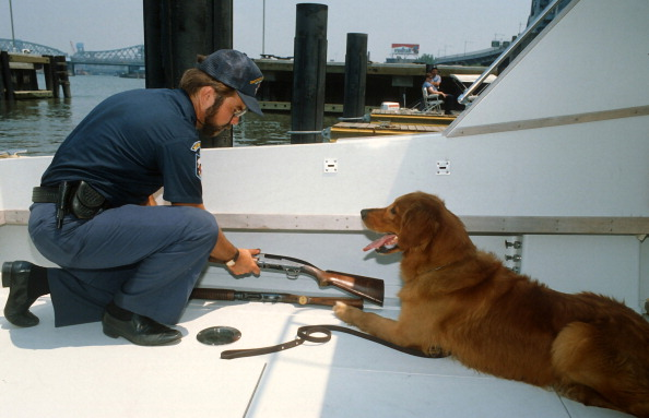 Weekend Activities「Special Agent And Dog」:写真・画像(18)[壁紙.com]