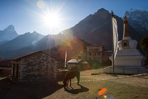 Ama Dablam「Tengboche Monastery in Nepal Himalayas」:スマホ壁紙(9)