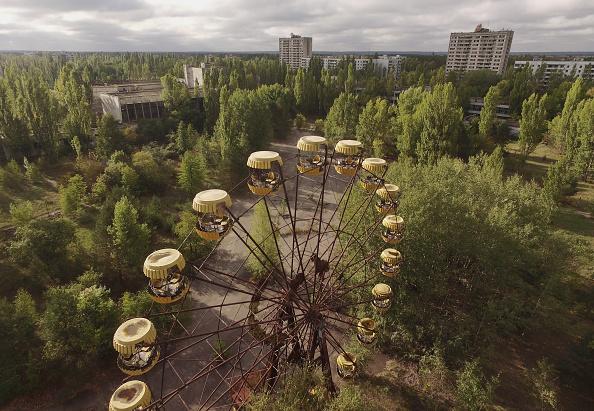 Tree「Chernobyl, Nearly 30 Years Since Catastrophe」:写真・画像(0)[壁紙.com]