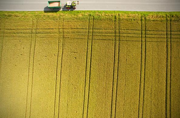 田畑「Warm weather helps cereal to grow across Germany」:写真・画像(8)[壁紙.com]