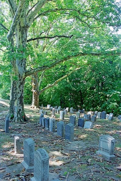 Hiroyuki Ito「Green-Wood Cemetery」:写真・画像(0)[壁紙.com]