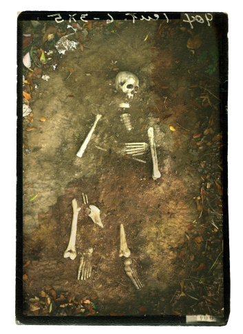 Human Skull「Remains」:スマホ壁紙(17)