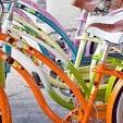 自転車カテゴリー(壁紙.com)