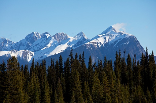 Yoho National Park「Snowcapped mountain range with trees in foreground」:スマホ壁紙(3)