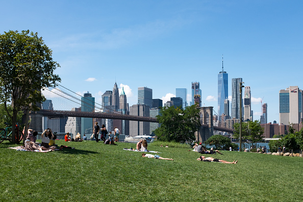 Grass Family「New York Skyline」:写真・画像(16)[壁紙.com]