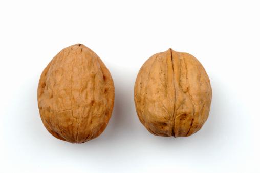 Nut - Food「Two walnuts」:スマホ壁紙(8)