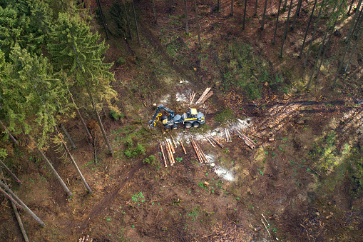 Construction Vehicle「Tree felling works - storm damage, aerial view」:スマホ壁紙(5)