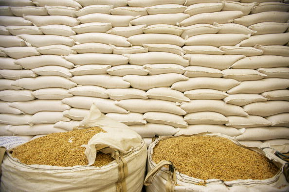 Corn「World Economic Forum Business Alliance Against Chronic Hunger Initiatives」:写真・画像(8)[壁紙.com]