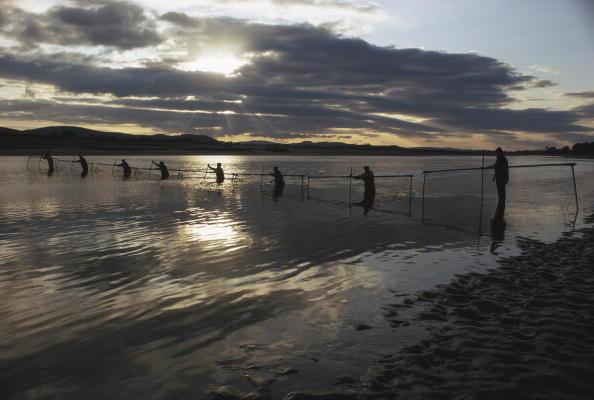 Fisherman「Salmon Trapping」:写真・画像(9)[壁紙.com]