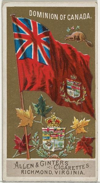 かえでの葉「Dominion Of Canada」:写真・画像(13)[壁紙.com]
