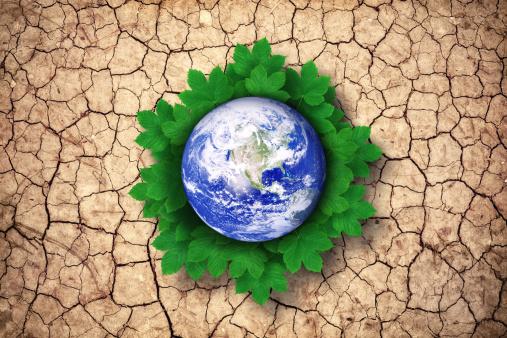 かえでの葉「緑の地球」:スマホ壁紙(13)