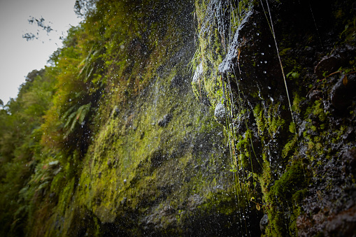Rock Face「Chile, Patagonia, Osorno Volcano, water flowing over mossy rock face at Las Cascadas waterfall」:スマホ壁紙(4)