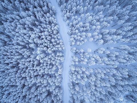 Dirt Road「Austria, Gosau, aerial view of road through coniferous forest in winter」:スマホ壁紙(2)