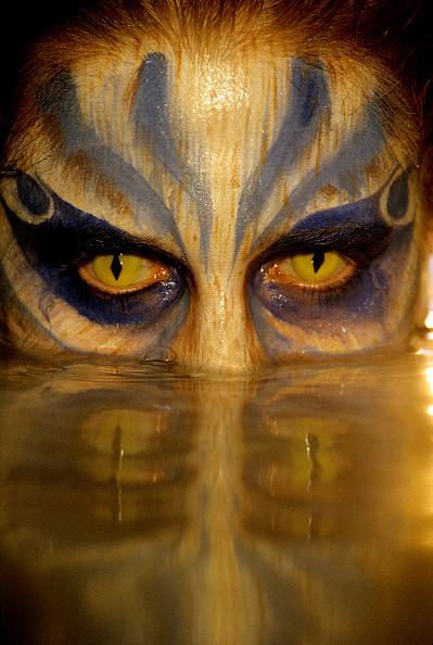 Iris - Eye「The Sense Of Sight」:写真・画像(5)[壁紙.com]