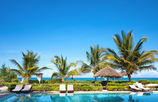 Poolside「Beachfront Swimming Pool」:スマホ壁紙(19)