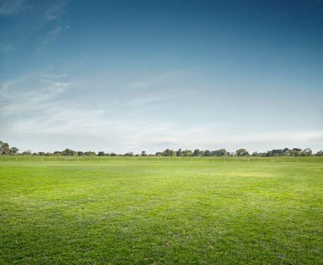 Grass「Empty Sports Ground」:スマホ壁紙(14)