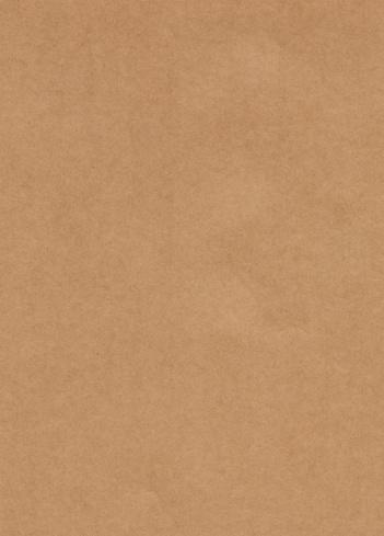 Brown Paper「Unmarked rectangular sample of Kraft paper」:スマホ壁紙(14)