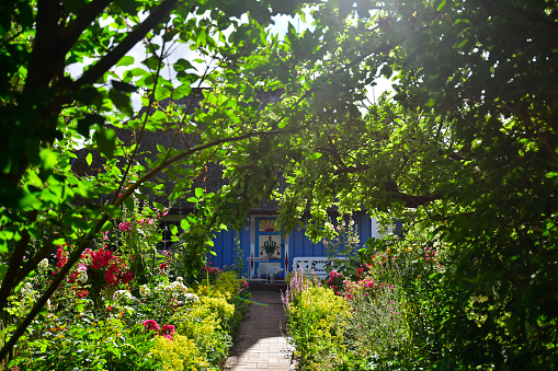Footpath「Germany, Zingst, garden and house」:スマホ壁紙(11)