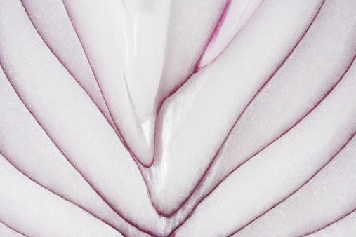 Onion「Sliced red onion, close-up」:スマホ壁紙(12)