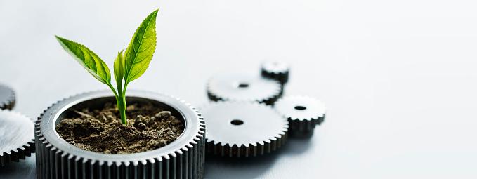 Business Strategy「Sustainable Development」:スマホ壁紙(13)