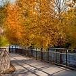 Animas River壁紙の画像(壁紙.com)