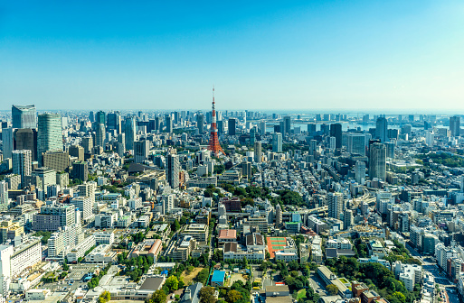 Tokyo Tower「Skyline towards Downtown and Tokyo Bay」:スマホ壁紙(1)