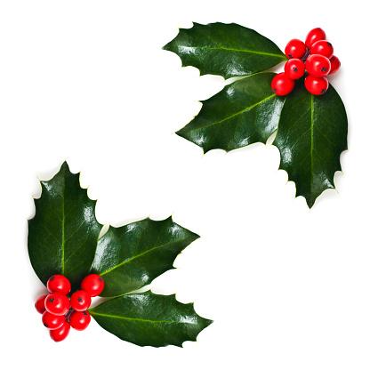 Christmas「Christmas Holly Corners」:スマホ壁紙(6)