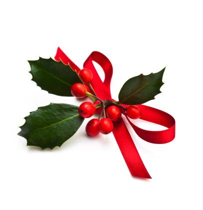 Floral Garland「Christmas Holly」:スマホ壁紙(5)