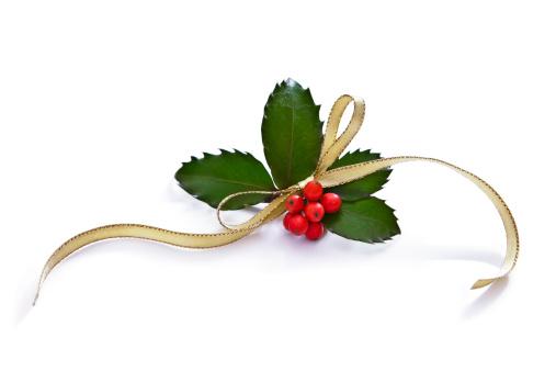Floral Garland「Christmas Holly」:スマホ壁紙(8)