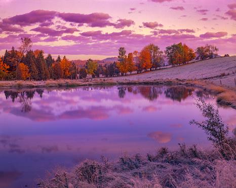 グリーン山脈「池と砂糖のカエデと冷ややかな夜明け, VT」:スマホ壁紙(3)