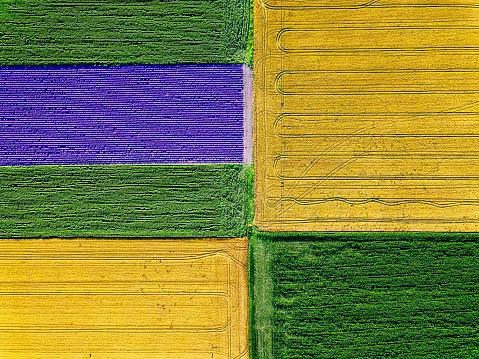 Plowed Field「Cultivated farm land」:スマホ壁紙(6)