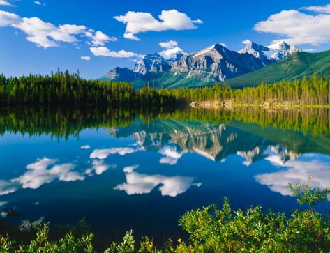Wilderness Area「Canadian Rockies In Banff NP」:スマホ壁紙(17)