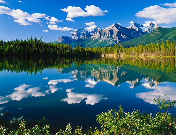 Canadian Rockies In Banff NP:スマホ壁紙(壁紙.com)