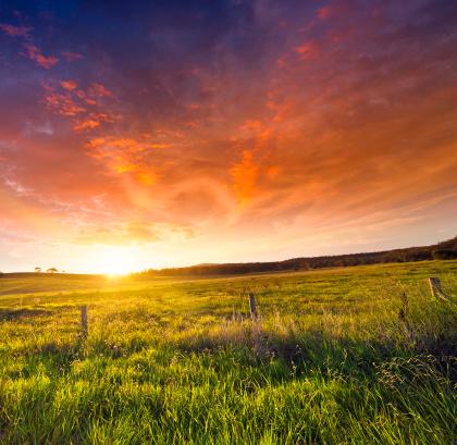 Queensland「Golden Sunset」:スマホ壁紙(1)