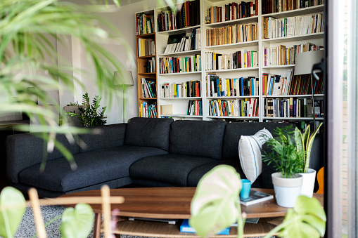 Houseplant「Couch and bookshelf in cozy living room」:スマホ壁紙(6)