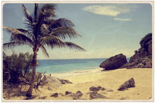 Postcard「Palm Tree on a Mexican Beach - Vintage Postcard」:スマホ壁紙(10)