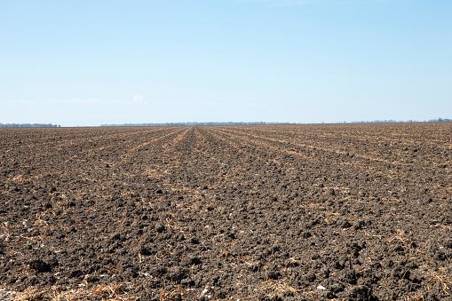 Plowed Field「Ploughed Fields」:スマホ壁紙(4)