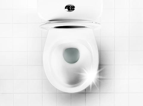 Public Restroom「obsessively clean toilet bowl」:スマホ壁紙(1)