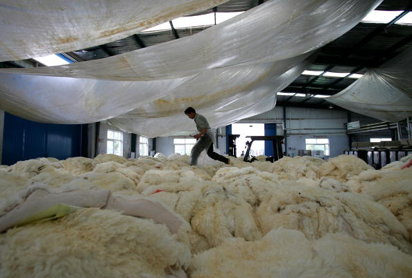 Animal Hair「People Work At Longfeng Leather And Fur Factory」:写真・画像(10)[壁紙.com]