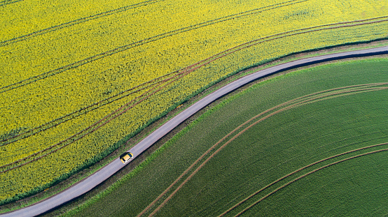 Agricultural Field「Car driving on country road between fields」:スマホ壁紙(2)